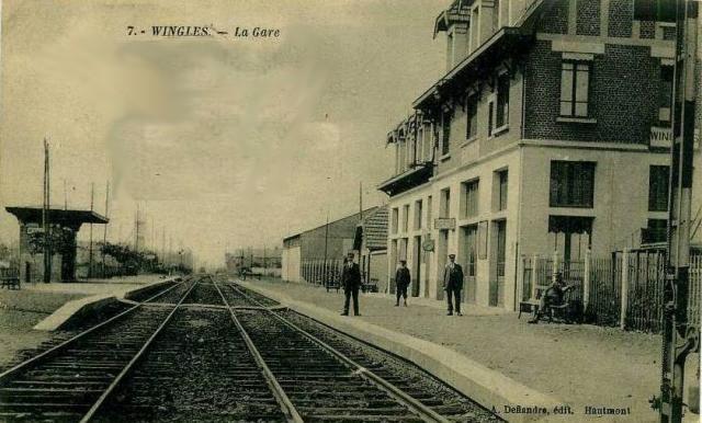 wingles02.jpg
